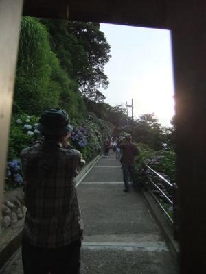 写真447(№177用)1