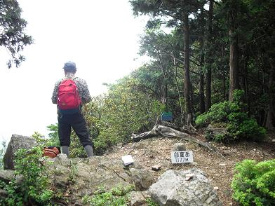白屋岳1177mのピーク