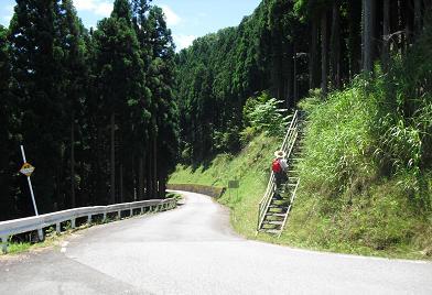 高野辻の登山口