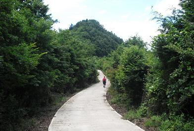 白六山線を歩く