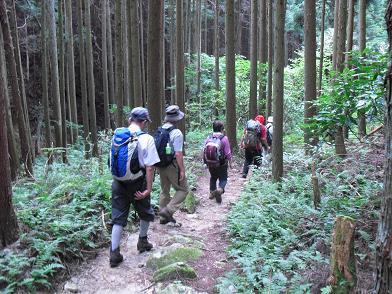 金剛山・タカハタ道