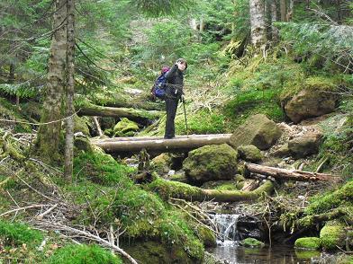 3 オーレン小屋への登山道