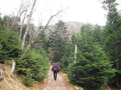 4 オーレン小屋への登山道・硫黄岳