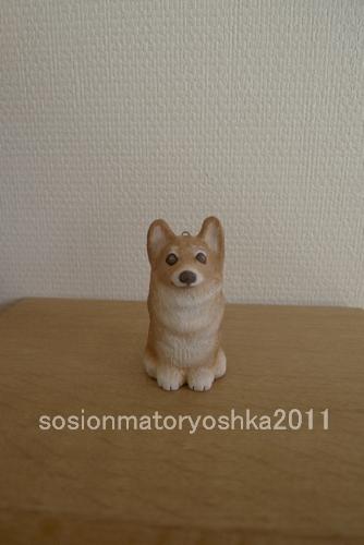 mmato20112.jpg
