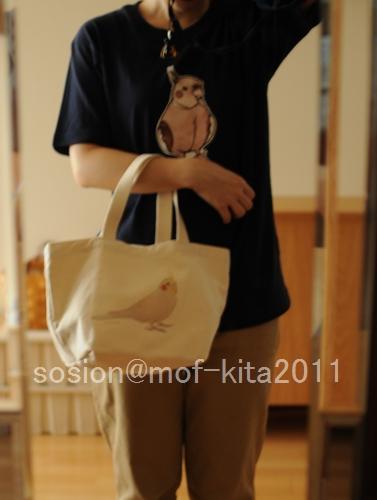 mofkita2011bbb.jpg
