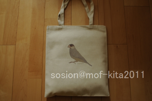 mofkita2011dd.jpg