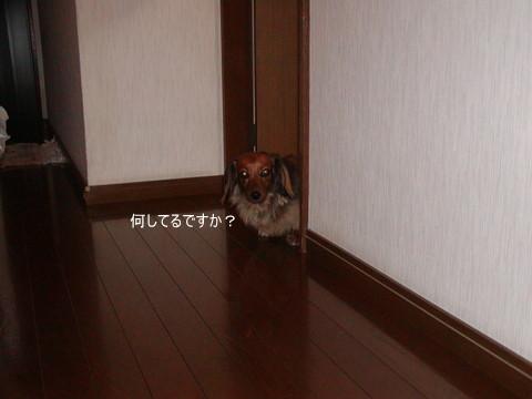 002_20101027214635.jpg