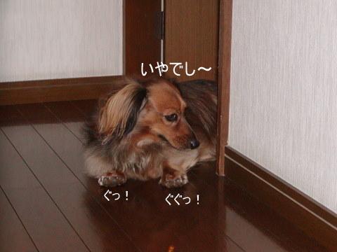 004_20101027214635.jpg