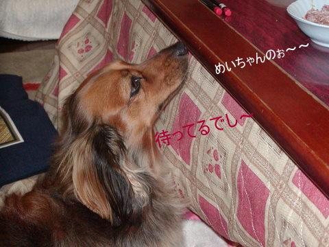 004_20101125222031.jpg