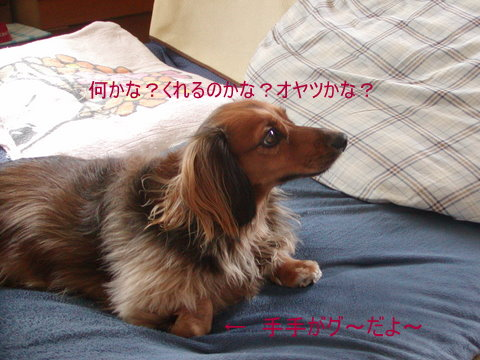 009_20101015221542.jpg