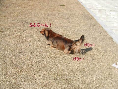 012_20101221220353.jpg