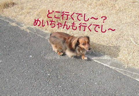 014_20110123230048.jpg