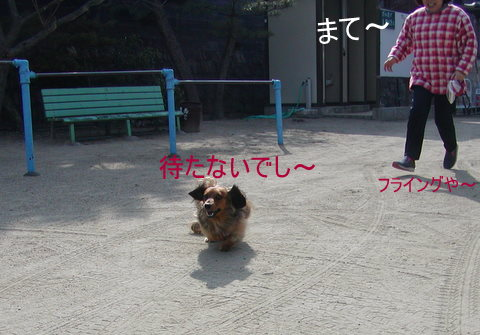 020_20110206223203.jpg