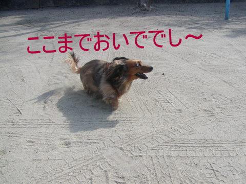 023_20110206223750.jpg