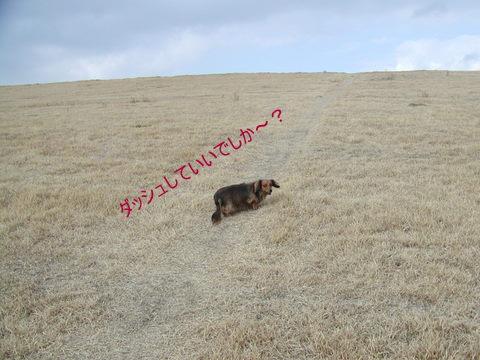 027_20110110144938.jpg