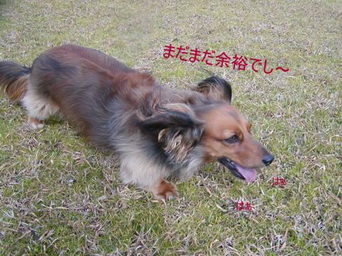 030_20110222225103.jpg