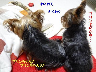 20120317171234.jpg