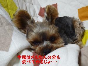 20120317175955.jpg
