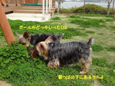 20120512012753.jpg