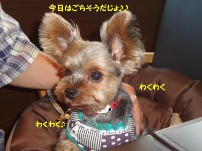 20120617012637.jpg