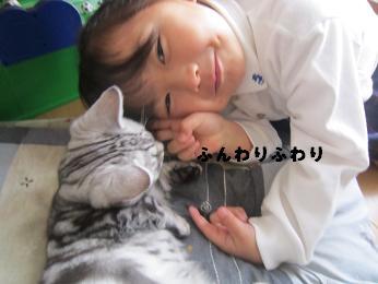 2010.4  fuuwa