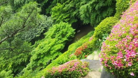 池田山公園-2