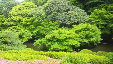 池田山公園-4