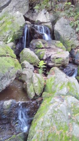 池田山公園-7