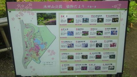 池田山公園-9
