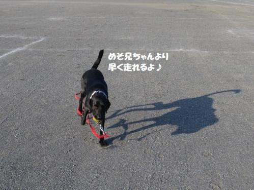 IMG_4146.jpg