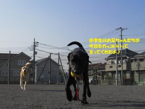 IMG_4388_20111207175258.jpg