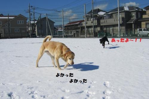 IMG_45162012125.jpg