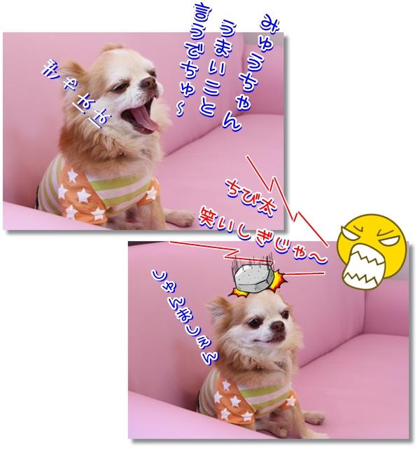 25_20120527211104.jpg