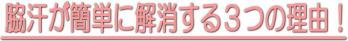 image_wakiase_008.jpg