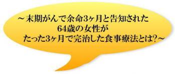 img001_20110108105316.jpg