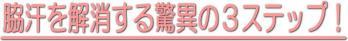 s_image_wakiase_006.jpg