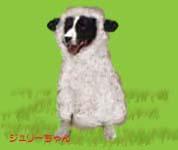 羊ジュリーちゃん