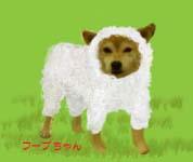 羊フープちゃん