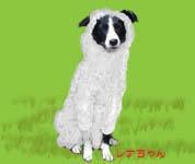 羊レナちゃん