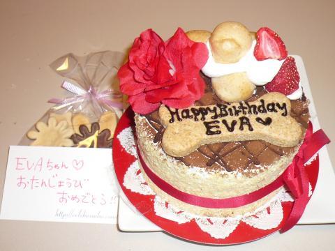 eva+Birthday+044_convert_20101031170046.jpg