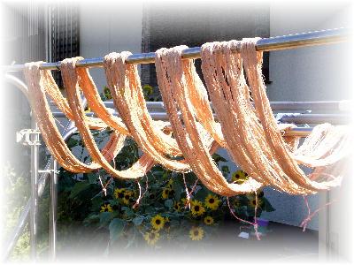 糸の柿渋染め