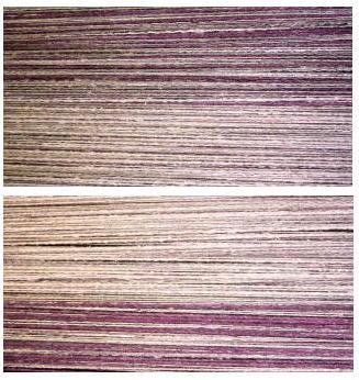 紫ストール整経2