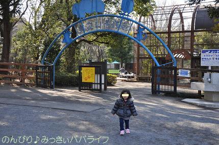 chikozanzoo09.jpg