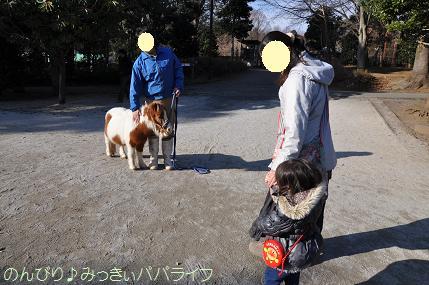 chikozanzoo13.jpg