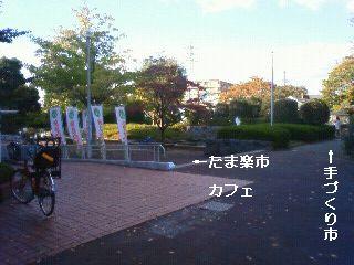 201011111505001.jpg