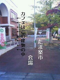 201011111506001.jpg