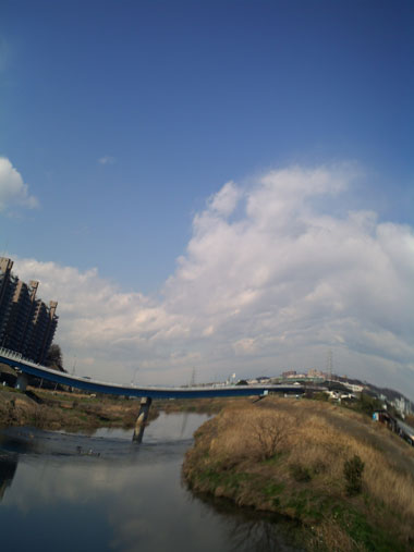 201203256.jpg
