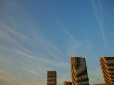 201208096.jpg