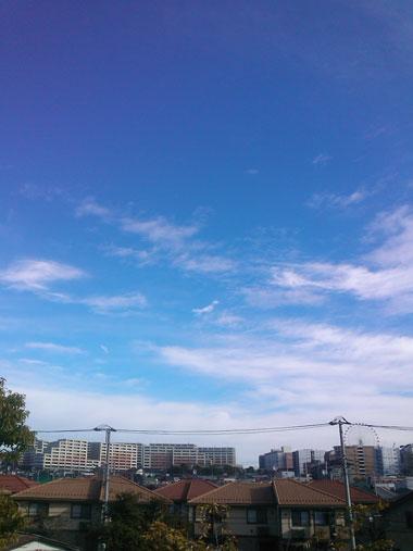 201211151.jpg