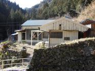 midori-ya nodoka